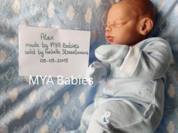 Alex by Maria Jordano (MYA Babies) 2019-11-10